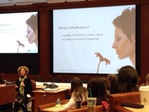 Mindfulness Harvard